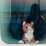 Dreaming about my friend in the ferry!