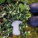 Shoes - warten auf den Frühling