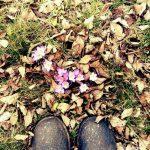 Shoes - warten bis die Blumen blühen