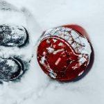 Shoes - im Winter dennoch Fussball spielen